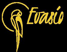 EVASIO - Logo - Noir